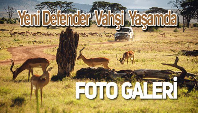 Yeni Defender Foto Galeri