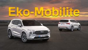 Hyundai Eko-Mobilite