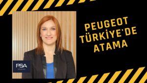 Gülin Reyhanoğlu kimdir